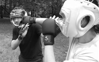 Vidéos d'entrainement – Kung-Fu Wing Chun – Confinement