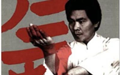 Annulation des cours de Wing Chun