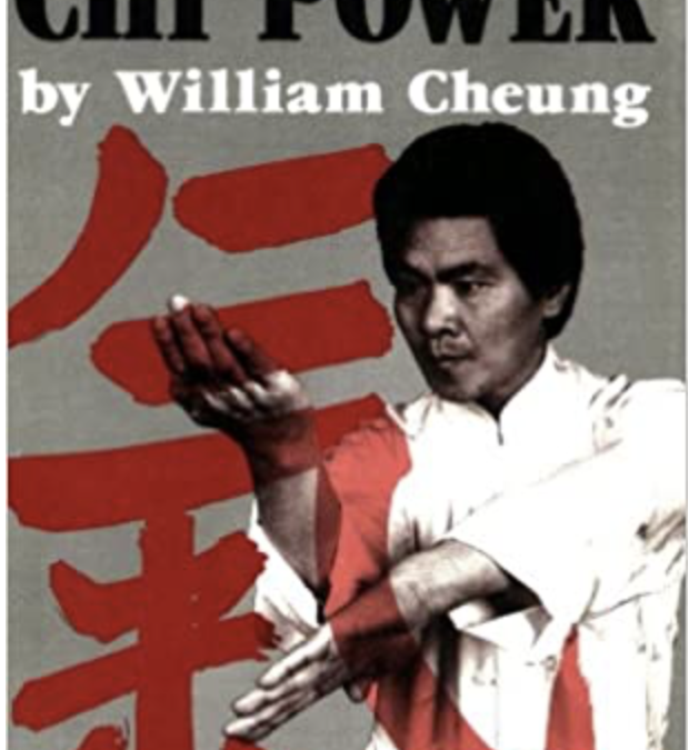 william cheung wing chun rennes